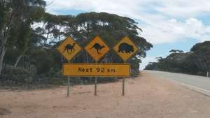 Rare signpost with camel
