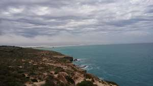 Whale watching at Head of the Bight