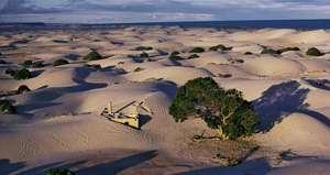 Eucla sand dunes