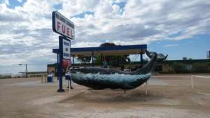 Big Whale at Nullarbor Roadhouse (SA)