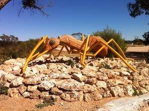 Big Ant at Poochera (SA)