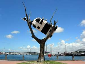 Big cow in a tree - Docklands, Melbourne